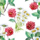 Dalia rossa del mazzo e camomille bianche dell'acquerello Modello senza cuciture floreale su un fondo bianco illustrazione vettoriale