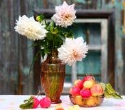 Dalia y manzanas Fotografía de archivo libre de regalías