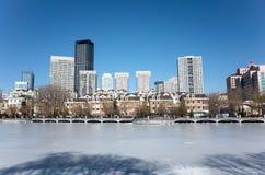 Dalian pejzaż miejski w zimie Zdjęcia Royalty Free