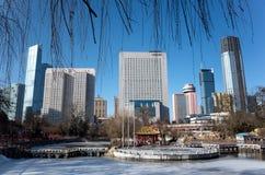 Dalian pejzaż miejski w zimie Obrazy Royalty Free