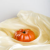 Dalicate pomidor Fotografia Stock