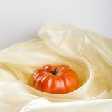 Dalicate tomat Arkivbild