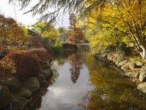Daling/Autumn Landscape Stock Afbeelding