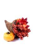 Daling - de Decoratie van de Dankzegging stock foto's