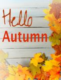 Daling of de herfstgrens van kleurrijke zijdebladeren, pinecones, noten en takjes allen op een rustiek houten achtergrond geschil Stock Fotografie