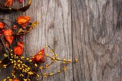 Daling en Halloween-Achtergrond Royalty-vrije Stock Foto's