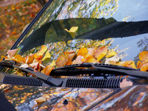 Daling op de auto Stock Afbeelding