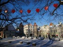 Daling van liefde met Tallinn Stock Foto's