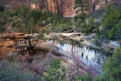 Daling van Nationaal Park Zion Royalty-vrije Stock Afbeeldingen
