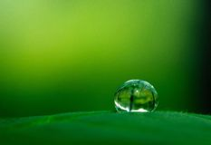 Daling van water in de schaduw van groen Royalty-vrije Stock Afbeeldingen