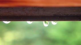 Daling van water ofter de regen stock videobeelden