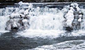 Dalingen die in de winter worden bevroren Stock Afbeeldingen