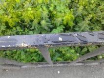 Dalingen van dauw op leuningen Stock Foto