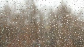 Dalingen van gesmolten sneeuw die als regen op de glasruit kijkt, met vage bomen die zich in wind op de achtergrond op overcas be stock videobeelden