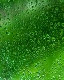Dalingen van regen op groene glasachtergrond stock afbeeldingen