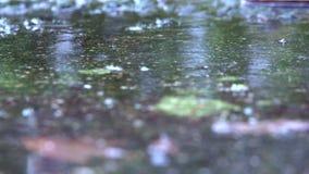 Dalingen van regendaling op de concrete oppervlakte stock videobeelden