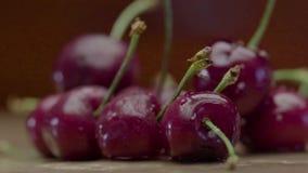 Dalingen van Water die op Rode Heldere Kers druipen stock video