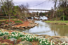 Dalingenpark op Reedy Greenville South Carolina Stock Foto
