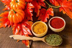 Dalings achtergrondkruiden en bladeren met pompoenen Royalty-vrije Stock Foto