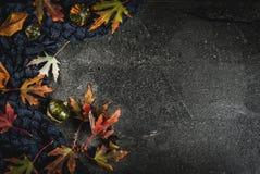 Dalingsachtergrond met bladeren en pompoenen Royalty-vrije Stock Foto