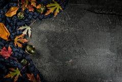 Dalingsachtergrond met bladeren en pompoenen Stock Foto's