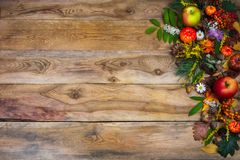 Dalingsachtergrond met pompoen en groene bladeren op houten lijst Royalty-vrije Stock Foto's