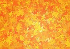 Dalingsbladeren als oranje achtergrond royalty-vrije stock fotografie