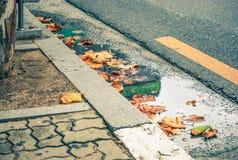 Dalingsbladeren in de weg en de bestrating stock afbeelding