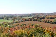 Dalingsgebieden met Forest Edging stock foto