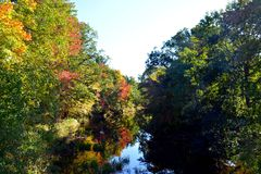 Dalingsgebladerte langs de rivier Stock Afbeelding