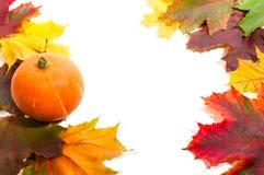 Dalingsgrens met pompoen en de herfstbladeren Stock Foto's