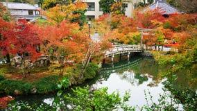 Dalingskleur en brug in Eikando-tempel, Kyoto Stock Foto's