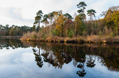 Dalingskleuren in een klein meer worden weerspiegeld dat Stock Afbeeldingen