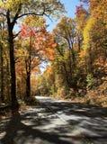 Dalingskleuren langs Blauw Ridge Parkway royalty-vrije stock foto's