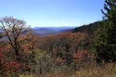 Dalingskleuren langs Blauw Ridge Parkway royalty-vrije stock foto