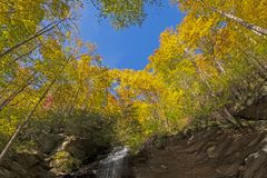 Dalingskleuren op Cliff Top royalty-vrije stock fotografie