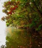 Dalingskleuren over een mistige rivier Stock Fotografie