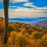 Dalingskleuren van Blauw Ridge Parkway royalty-vrije stock afbeelding