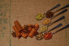 Dalingskruiden stock fotografie