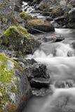 Dalingslandschap in bos met zijdeachtige satijn zachte rivier die in lange blootstelling stromen Stock Foto