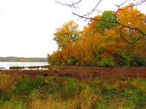 Dalingslandschap langs het water met oranje en gele tonen royalty-vrije stock afbeeldingen