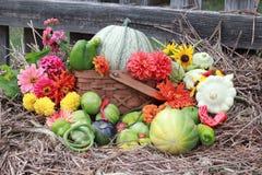 Dalingsoogst met heldere bloemen Stock Foto
