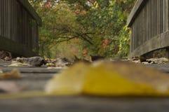 Dalingsvoetgangersbrug Stock Afbeeldingen