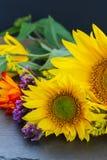 Dalingszonnebloemen Royalty-vrije Stock Afbeelding