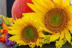 Dalingszonnebloemen met pompoen Royalty-vrije Stock Afbeeldingen