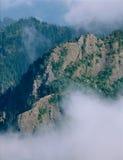 Dalla sommità del supporto Townsend, regione selvaggia di Buckhorn, parco nazionale olimpico, Washington fotografie stock libere da diritti
