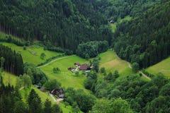 Dallandskap för svart skog Arkivbild