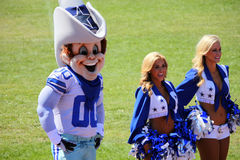Dallas Cowboy Cheerleaders & Rowdy the mascot Royalty Free Stock Image