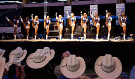 Dallas Cowboys Cheerleaders Perform Royalty Free Stock Photo