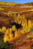 Dallas divide in Autumn Royalty Free Stock Images